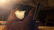 13 Медведь 3