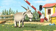 40 Коза