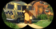 55 Медведь