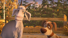 56 Коза и Пёс