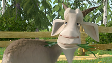 46 Коза