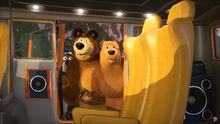 55 Медведь и Медведица