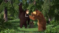 74 Медведь и Гималайский