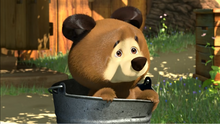 35 Медведь 2