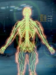 Fizjologia Adepta