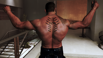 Vega muscles and tats