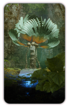 Codex MEA - Flora and Fauna folder