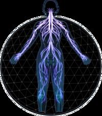 MEA Adept Profile
