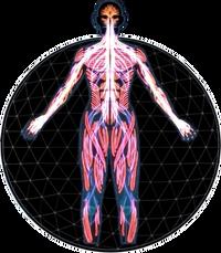 MEA Explorer Profile