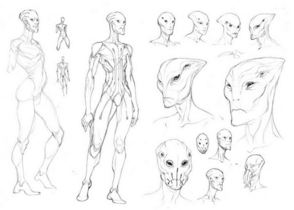 Prothean; different sketches