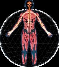 MEA Infiltrator Profile