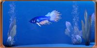 ME2 Рыба-скальд с Иллиума2
