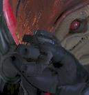 Hydra SG