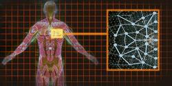 ME2 research - Shep health