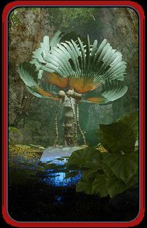 MEA Флора и фауна (кодекс)