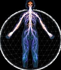 MEA Sentinel Profile