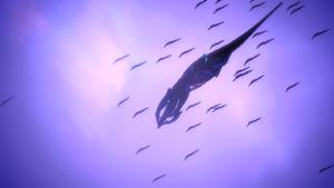 Sovereign armada
