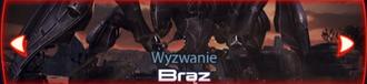 Bronze Baner