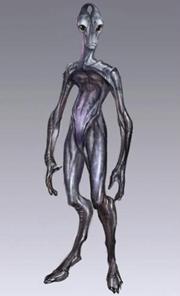 180px-Salarian concept