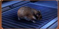 ME2 Космический хомячок