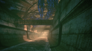Ilos trench run 2
