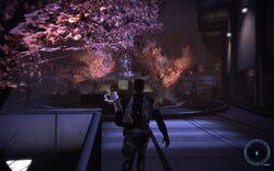 Mass-effect-shepard-citadel-tower-cherry-blossoms