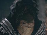Comandante krogan