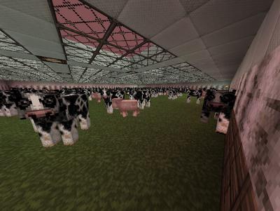 9thLegion Cowfarm