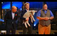 Lamb Challenge S4