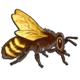 Символ алетиометра игра 15 Пчела