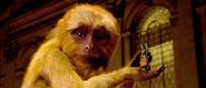 Золотая обезьяна с бабочкой деймоном