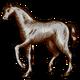 Символ алетиометра игра 3 Лошадь