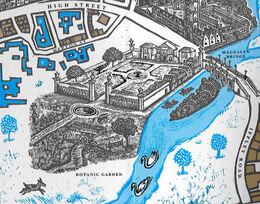 Ботанический сад Мост Магдалины Карта Оксфорда