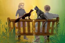 Скамейка Ботанический сад Лира Уилл Пан Кирджава иллюстрация обложки 2003