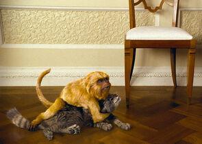 Золотая обезьяна нападение на Пантелеймона фильм