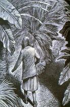 Ханна Джеспер ботанический сад иллюстрация