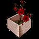 Символ алетиометра игра 30 Огороженный сад