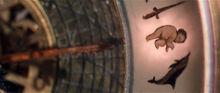 Символы алетиометра Ребенок меч дельфин фильм