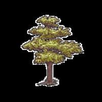 Символ алетиометра игра 5 Дерево крупный