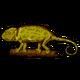 Символ алетиометра игра 24 Хамелеон