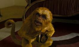 Золотая обезьяна находит Алетиометр