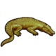 Символ алетиометра игра 16 Крокодил