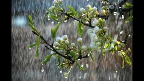 Spring Rain 春雨朦胧 piano remastered