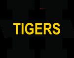 Hamilton Tigers