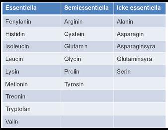 glycin i mat