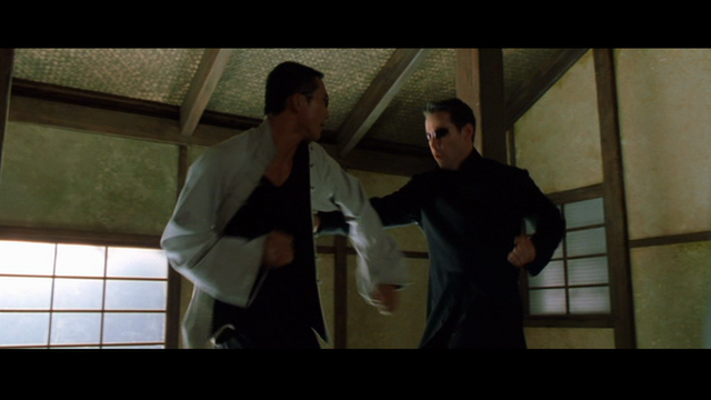 File:Matrix Wiki Seraph against Neo.png