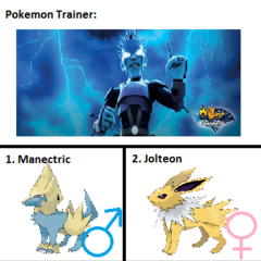 Captain Lightning's Pokemon