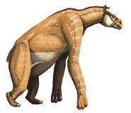 ChalicotheriumDB1