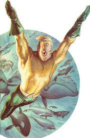 Ross Aquaman