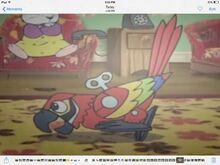 Parrot dead